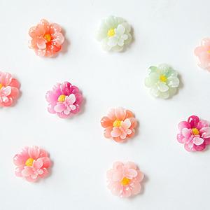 꽃과나비비취